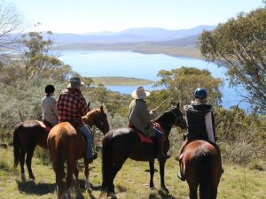 Reynella Homestead and Horseback Rides - Accommodation in Surfers Paradise