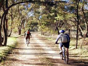 Bike About Mountain Bike Tours And Hire - Accommodation in Surfers Paradise