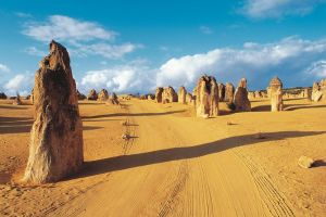 Pinnacles Desert Koalas and Sandboarding 4WD Day Tour from Perth - Accommodation in Surfers Paradise