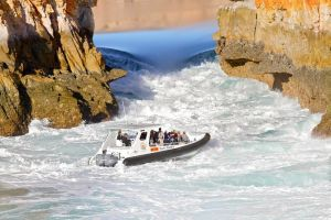 Horizontal Falls Half-Day Tour from Broome - Accommodation in Surfers Paradise