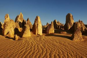 Pinnacles Day Trip from Perth Including Yanchep National Park - Accommodation in Surfers Paradise