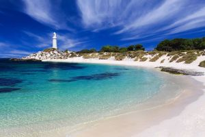 Rottnest Island Grand Tour Including Lunch and Historical Train Ride - Accommodation in Surfers Paradise