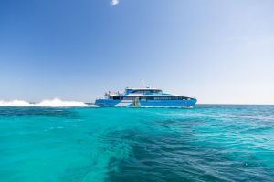 Fremantle to Rottnest Island Roundtrip Ferry Ticket - Accommodation in Surfers Paradise