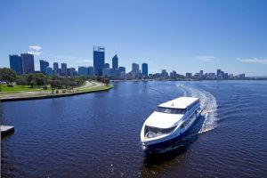 One-way Sightseeing Cruise between Perth and Fremantle - Accommodation in Surfers Paradise