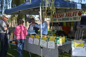 Corowa Rotary Federation Festival Market - Accommodation in Surfers Paradise